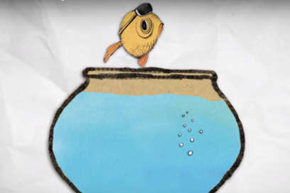Stress en ons vissenbrein…
